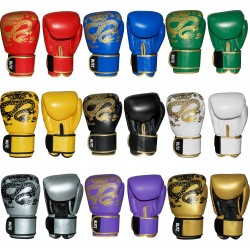 Gants de Boxe WARRIOR by Blitz