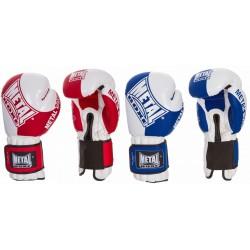 Gants Officiels Boxe Française