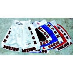 Short de Kick Boxing STAR PALACE