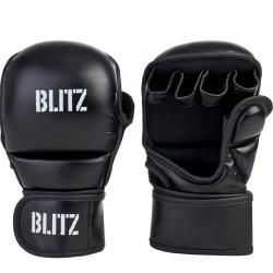 GANTS Blitz Avenger MMA Sparring